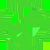 Chargeback-icon